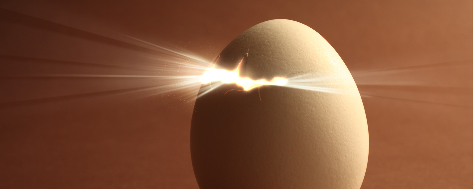 Image of an egg cracking indicating new beginnings with Swartz Consulting